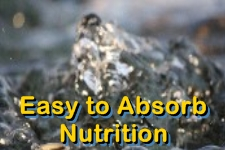 Angstrom Liquid Mineral Supplement - Ormus Minerals